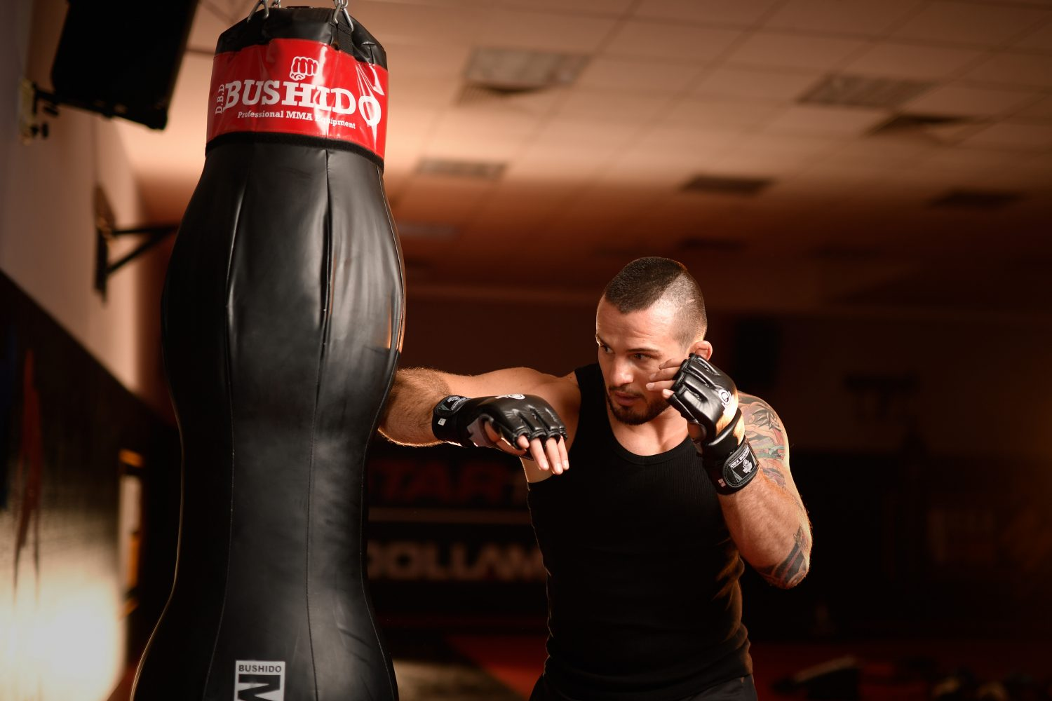FightZone.nl - martial arts products, services and nutritional supplements - Bushido - training in the gym - slider image 2
