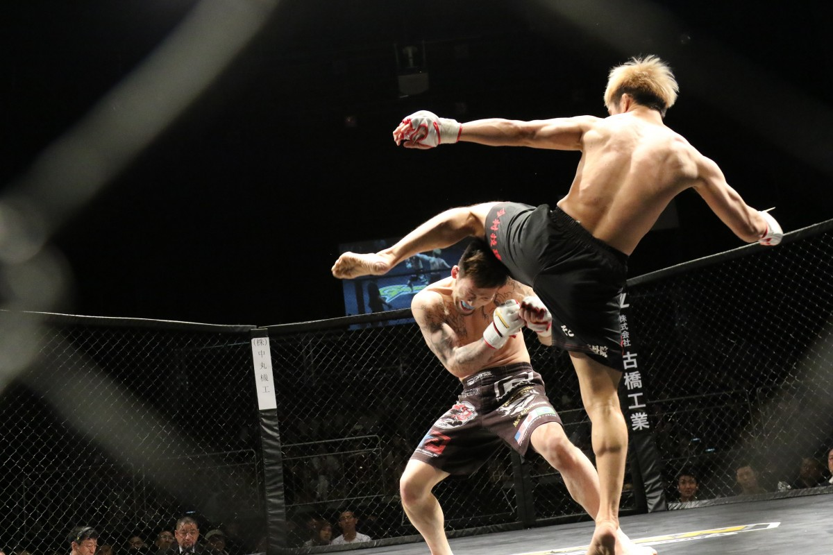 FightZone.nl - martial arts products, services and nutritional supplements - MMA Live Fight - Slider image 1